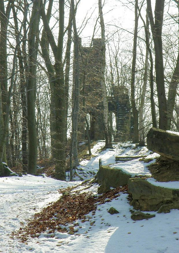Ruine der Schomburg in Bad Schandau