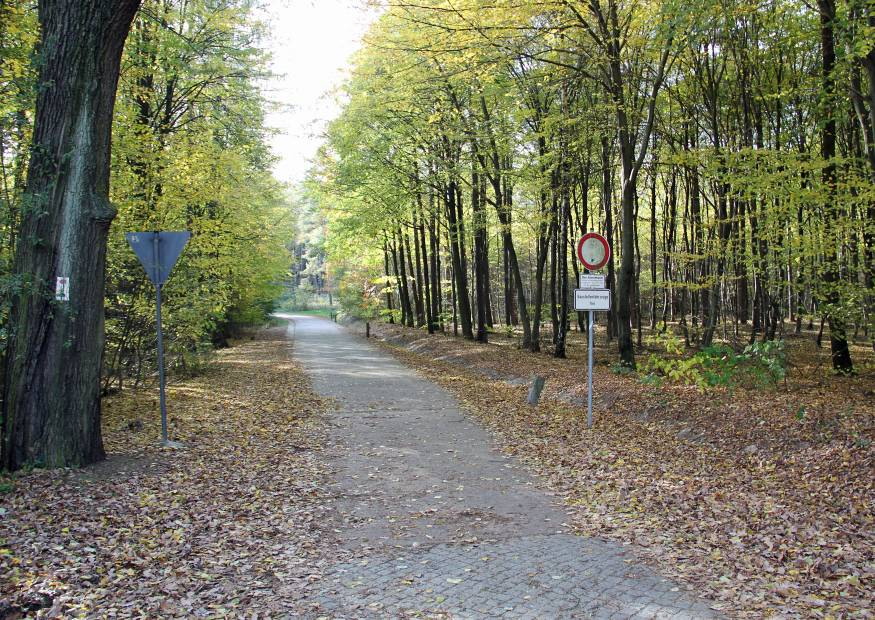 Collmbergstrasse wanderweg roter punkt gr ner strich f r for Roter punkt